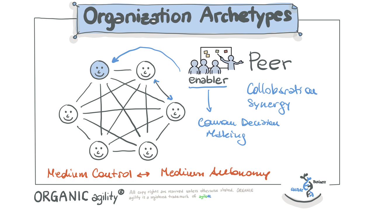Organization Archetypes in ORGANIC agility
